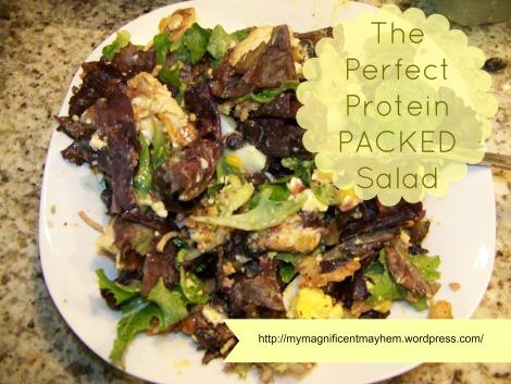 wordpress protein salad